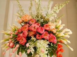 花艺术欣赏