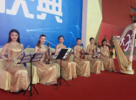 美女管弦重奏