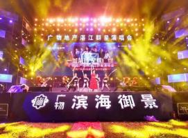 湛江广物地产群星演唱会