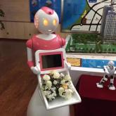 米卓机器人